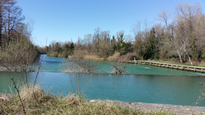 Izvir reke Timava