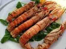 Škampi in kuharja